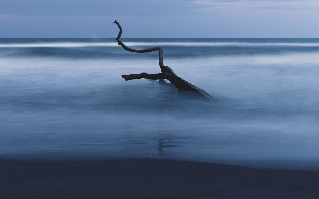 Tortuguero Beach, Costa Rica - unsplash