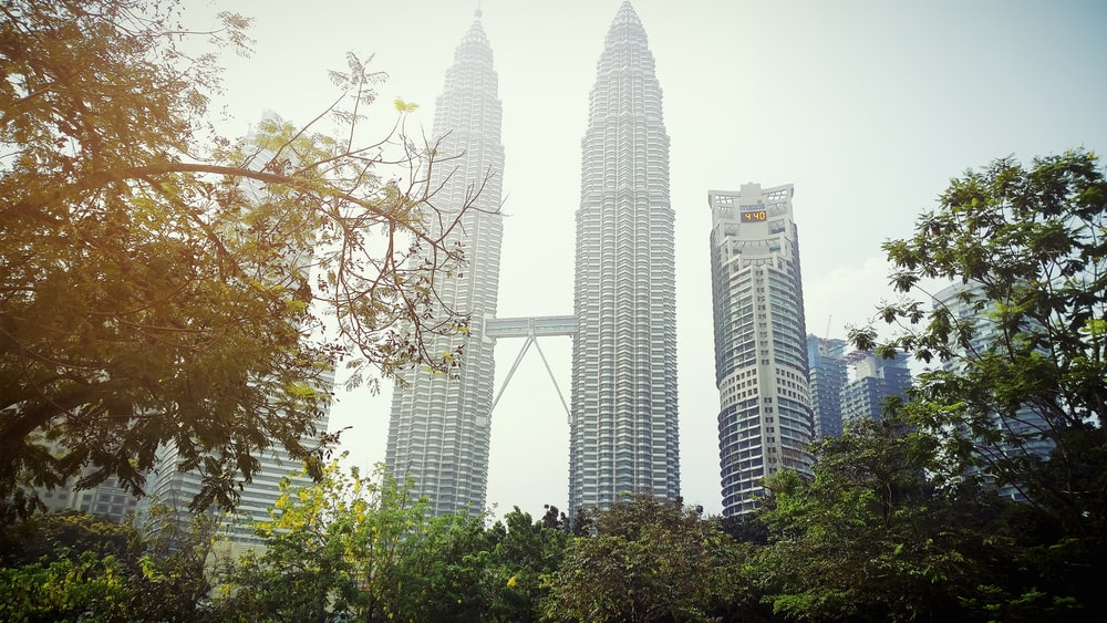 green trees near high rise buildings during daytime
