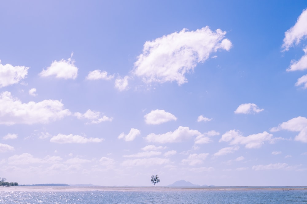 person standing on beach under blue sky and white clouds during daytime