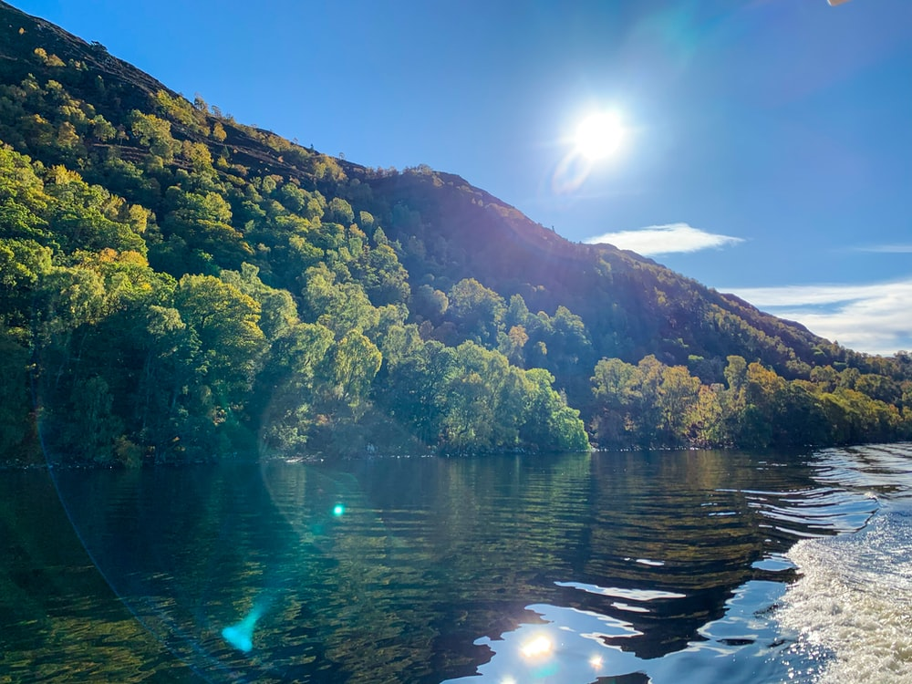 green trees on mountain beside river during daytime