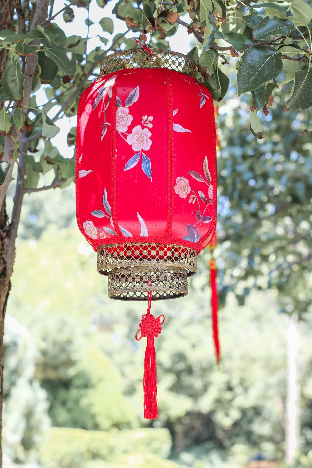 red and white hanging lantern