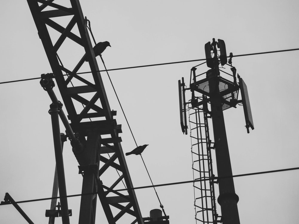 silhouette of birds on electric tower