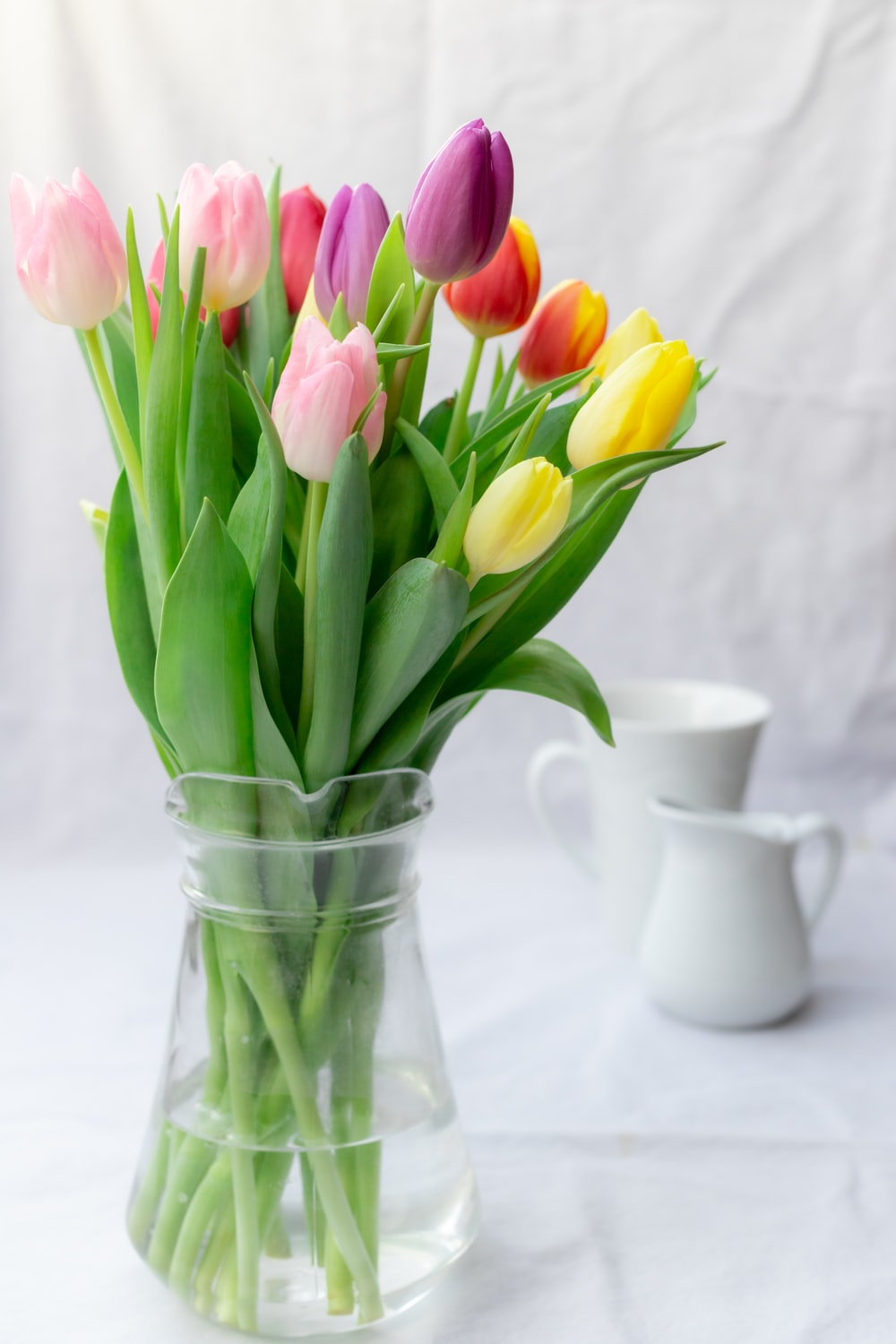 pink and yellow tulips in clear glass vase