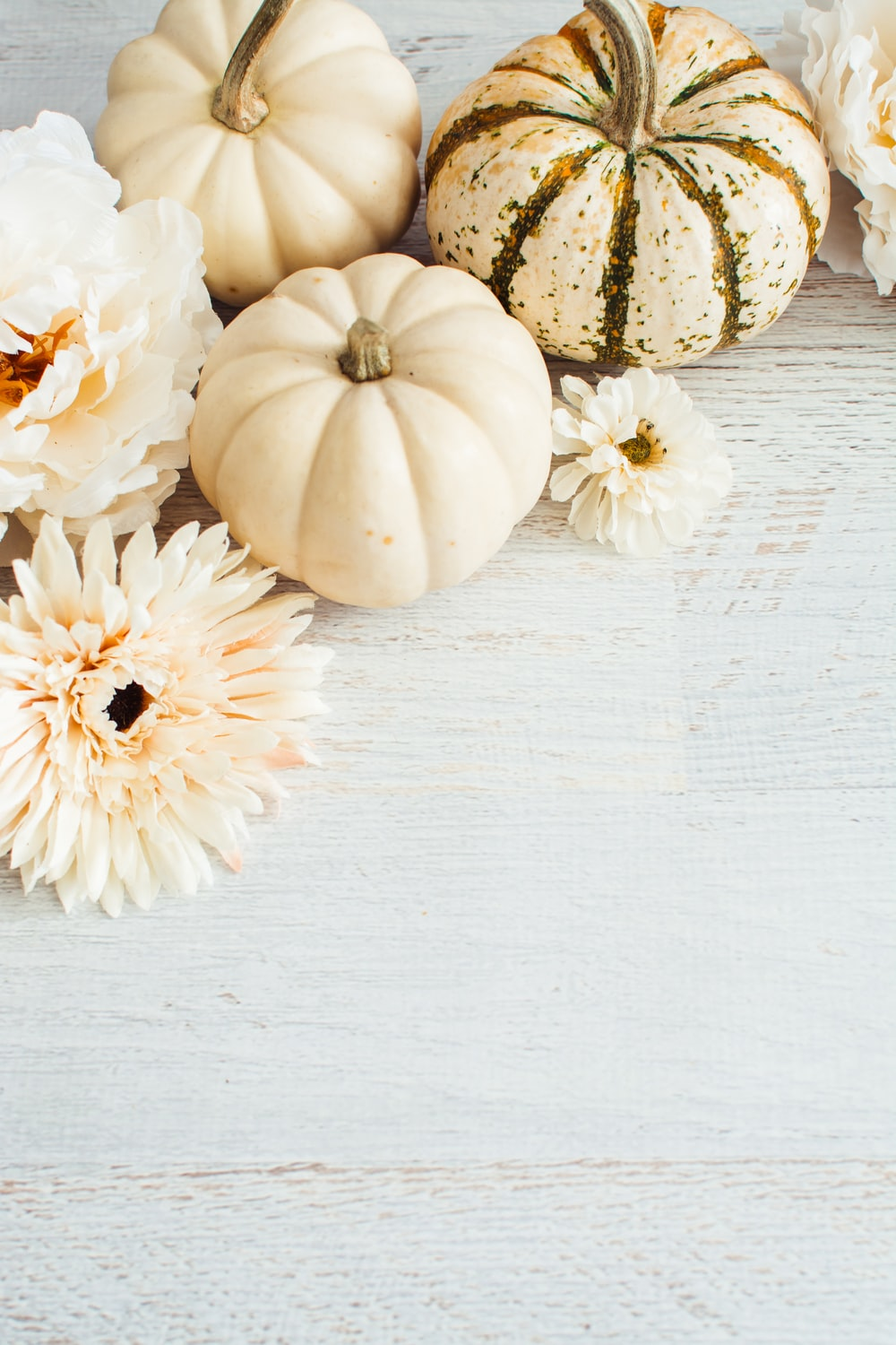 white and yellow pumpkin on white wooden table