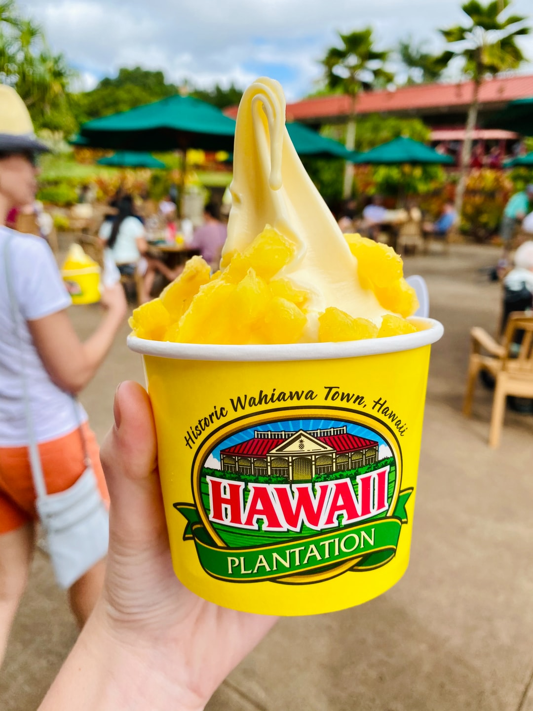 Dole whip on the Dole plantation in Oahu