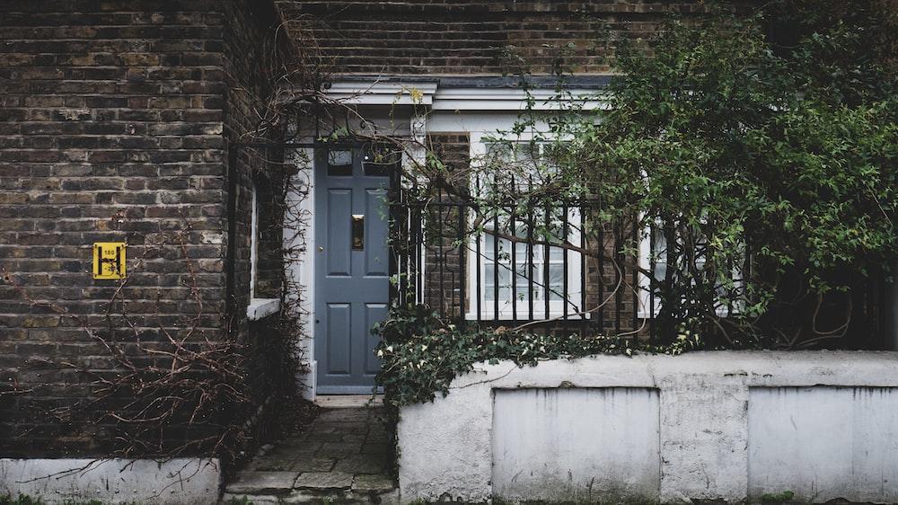 white wooden door with green plants