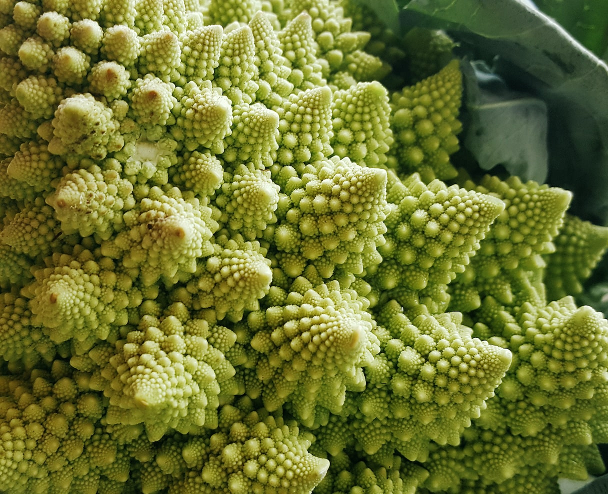 Romanesco picture