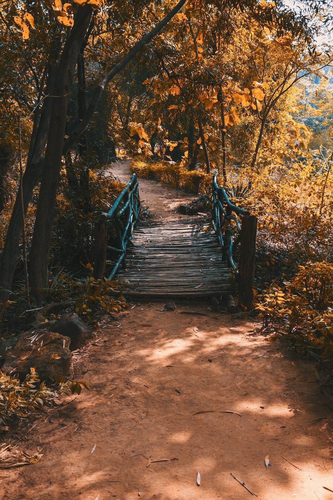 a wooden bridge to cross a water channel