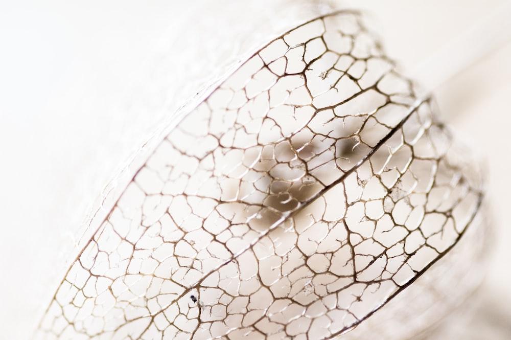 water dew on white textile