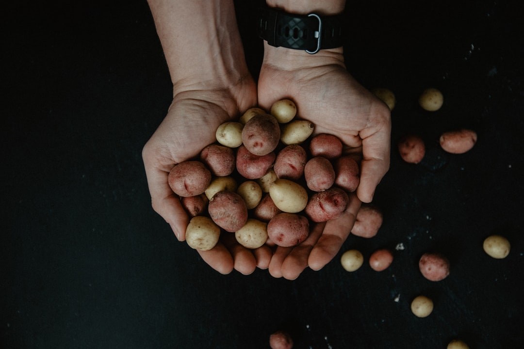 Man's hands holding a group of small red and yellow potatoes