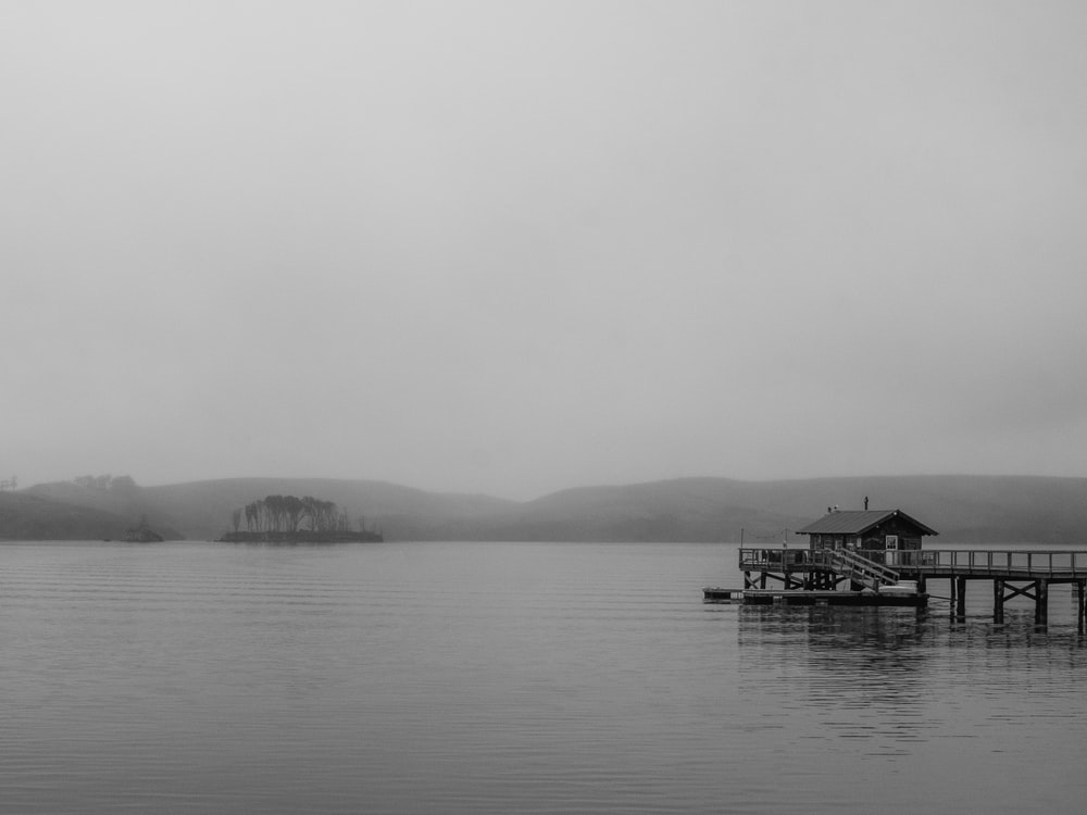 grayscale photo of dock on body of water