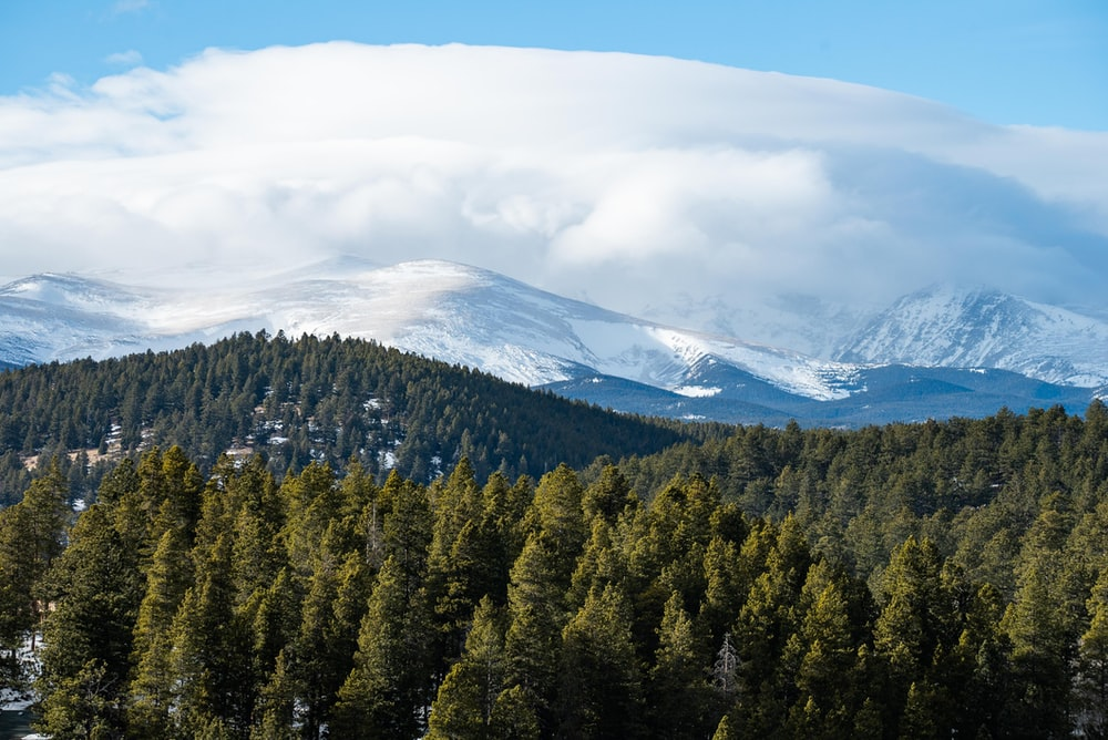 green trees near snow covered mountain under white clouds during daytime