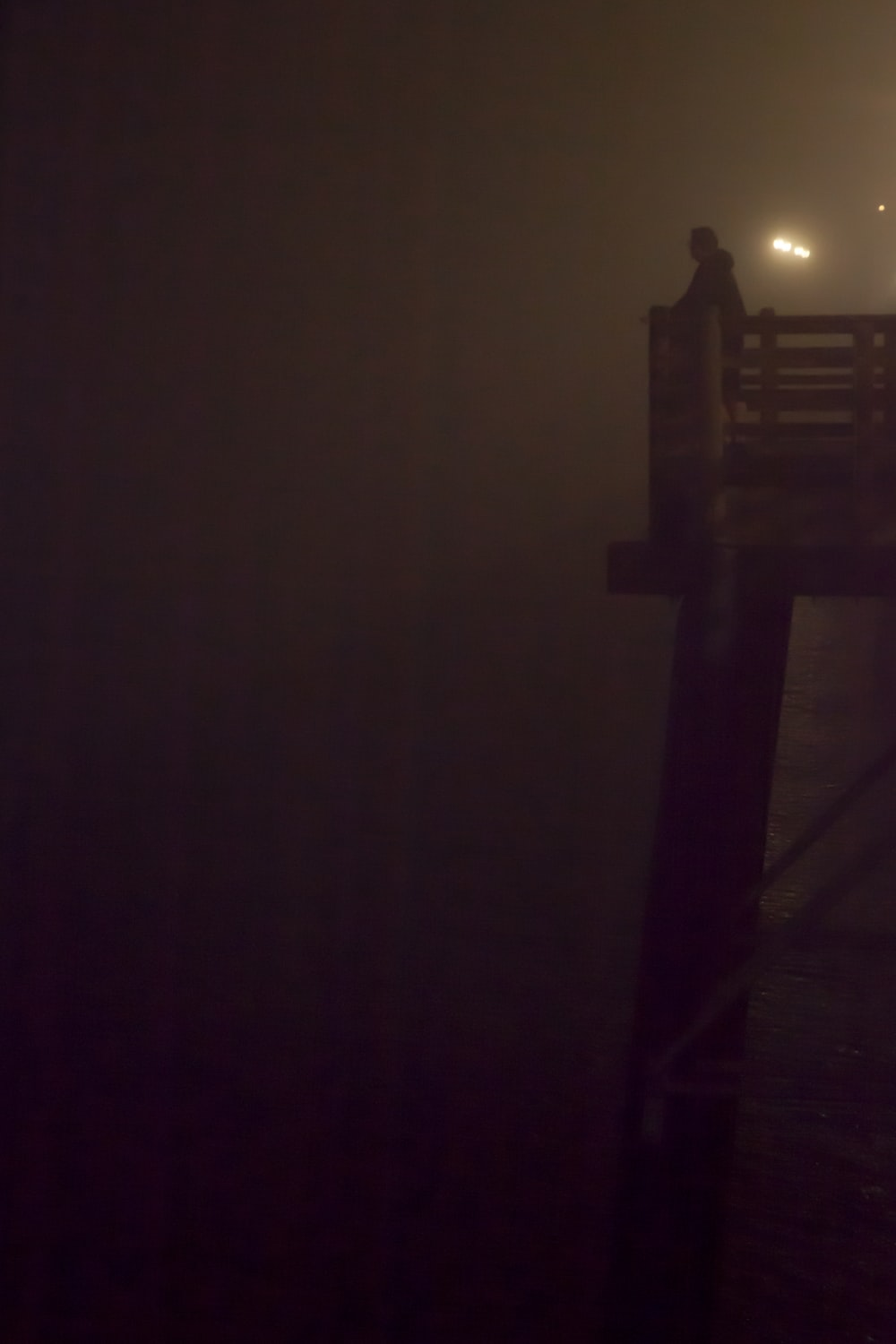 brown wooden dock during night time