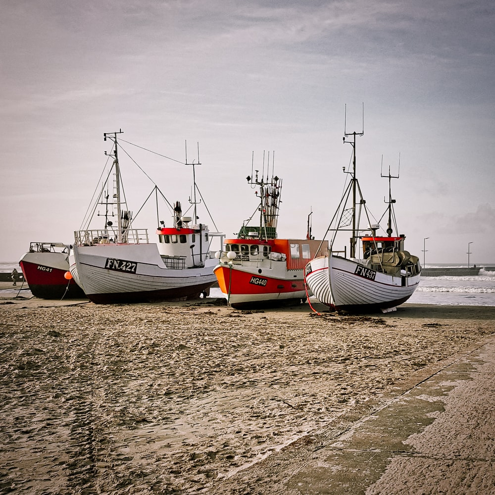 white and red boat on sea shore during daytime
