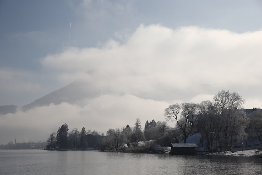boat on lake near trees during daytime