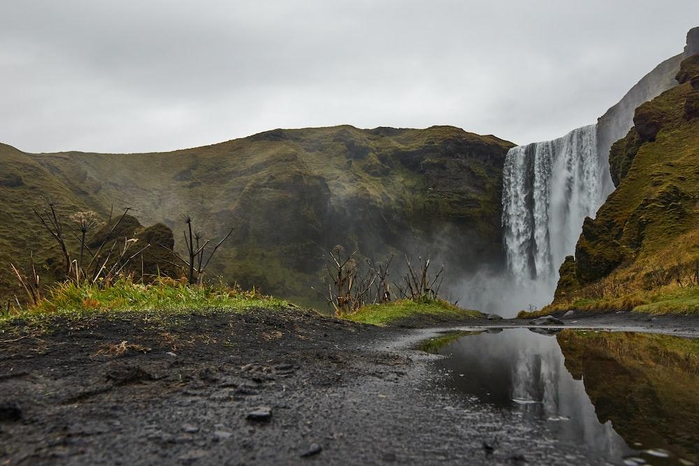green grass near water falls during daytime