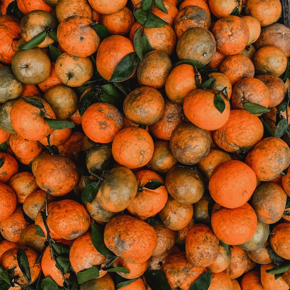 orange fruit lot during daytime