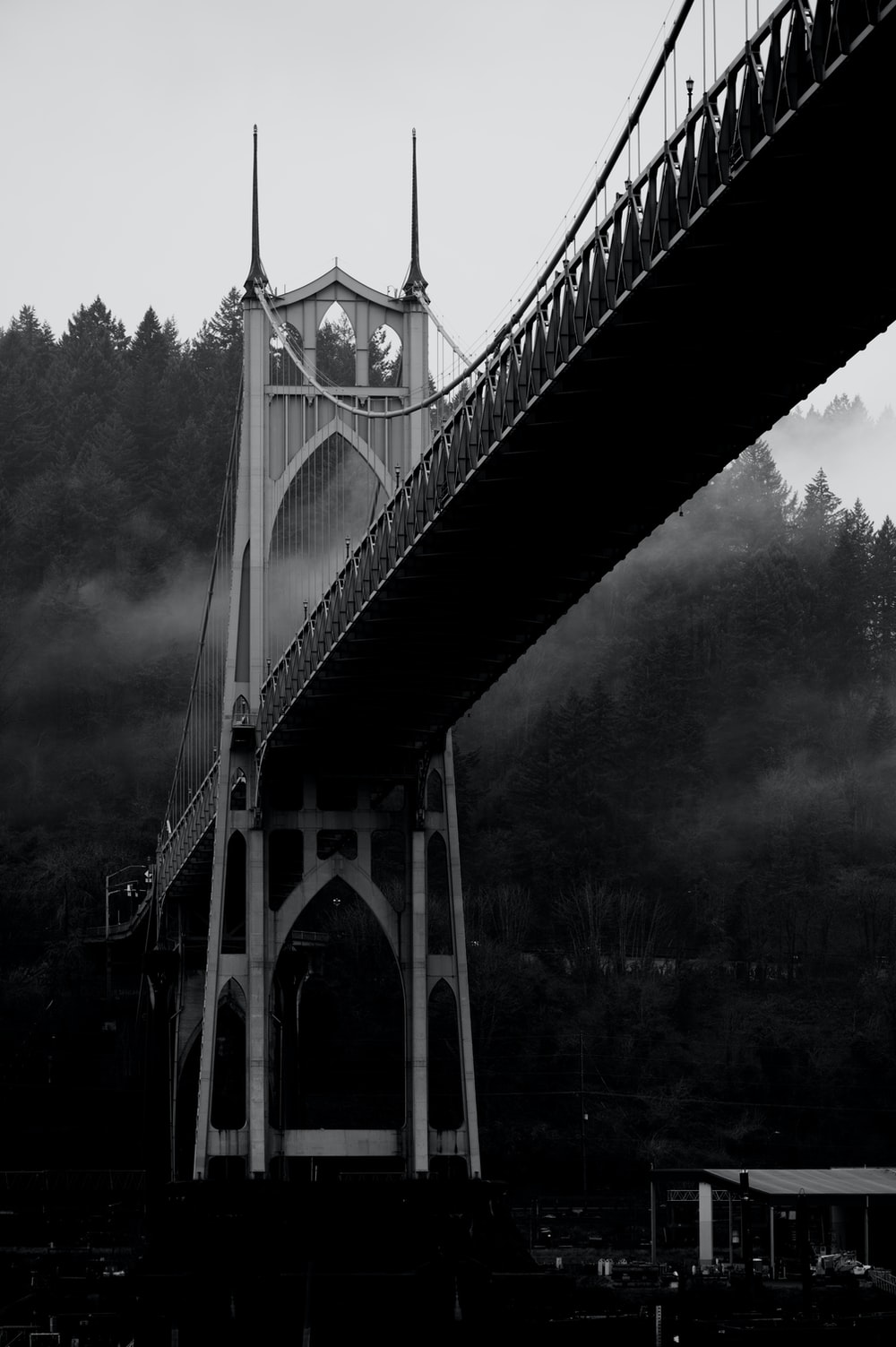 grayscale photo of bridge in forest