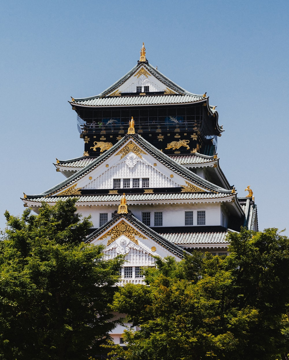 white and gold temple surrounded by green trees during daytime
