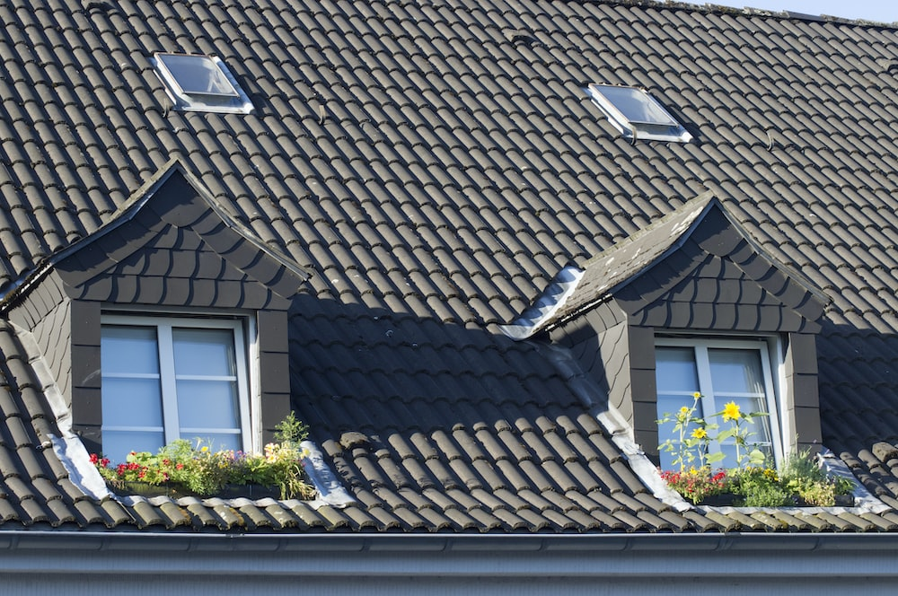 brown roof tiles near green plant during daytime