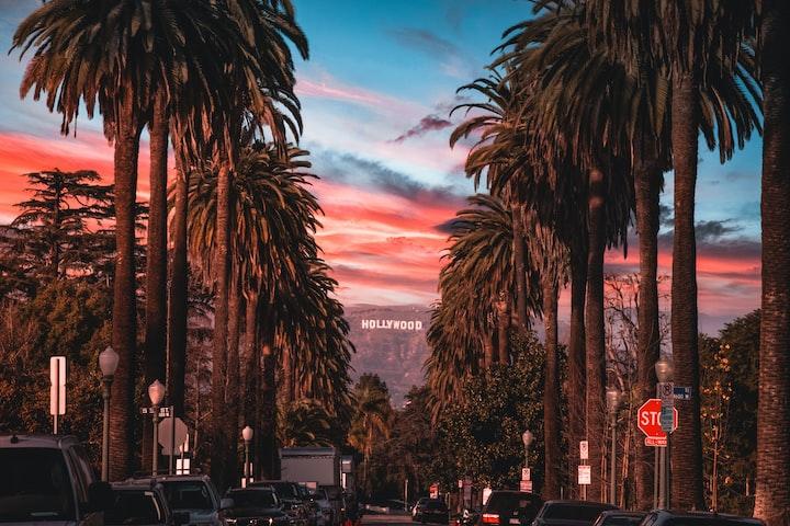 Nobody Lives In LA