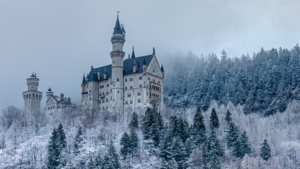 white and brown castle surrounded by trees covered with snow