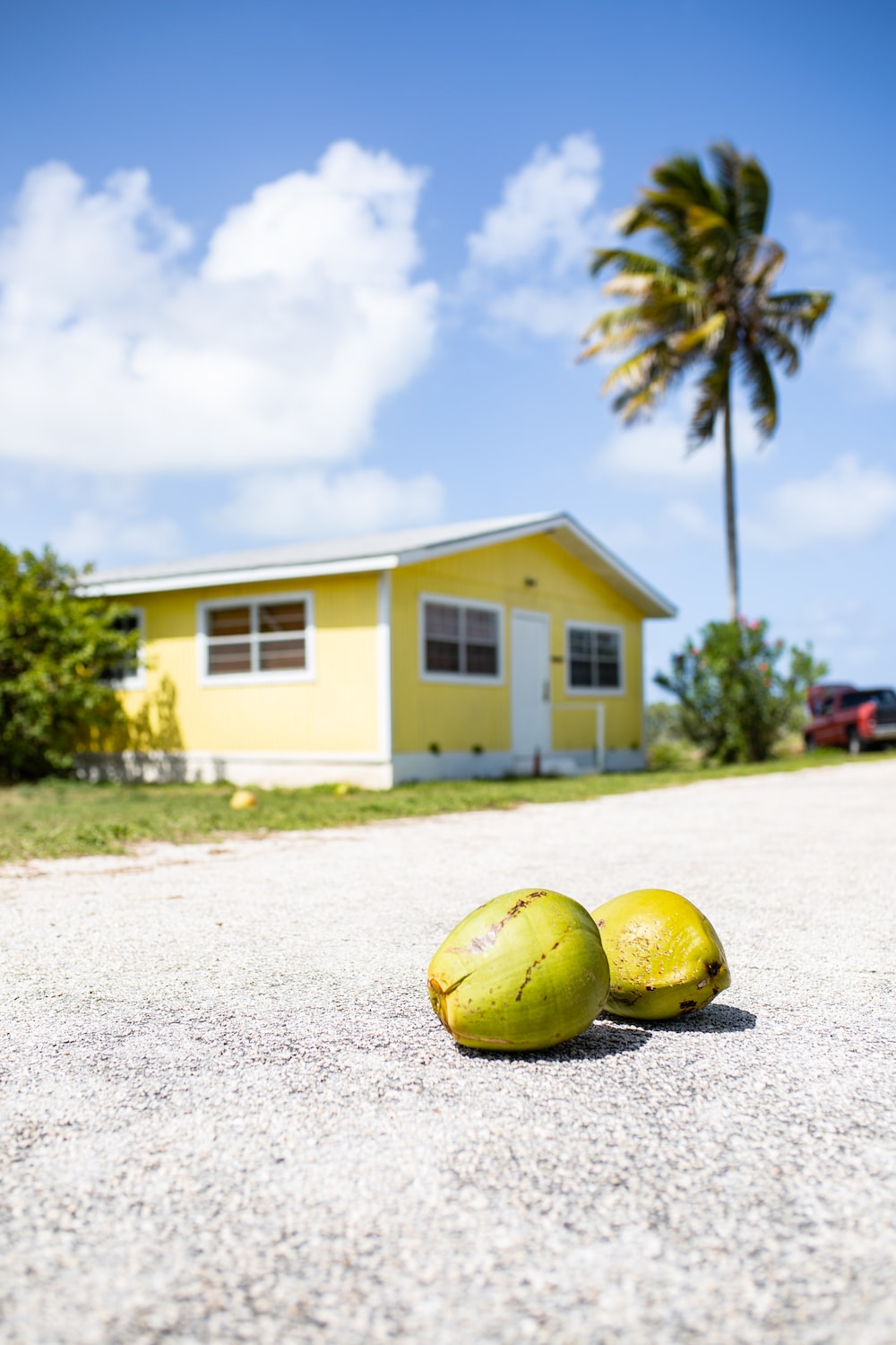 yellow and green round fruit on white sand during daytime