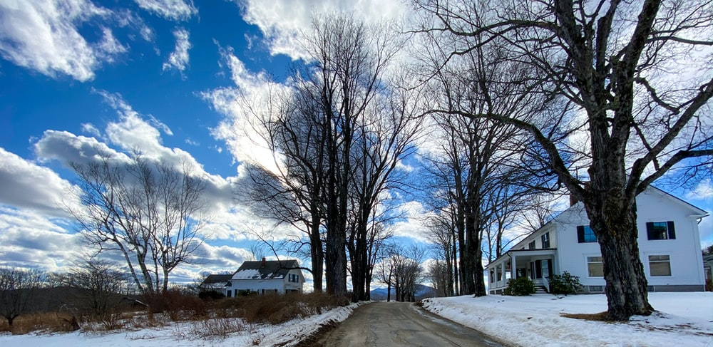 bare trees on snow covered ground under blue and white sunny cloudy sky during daytime