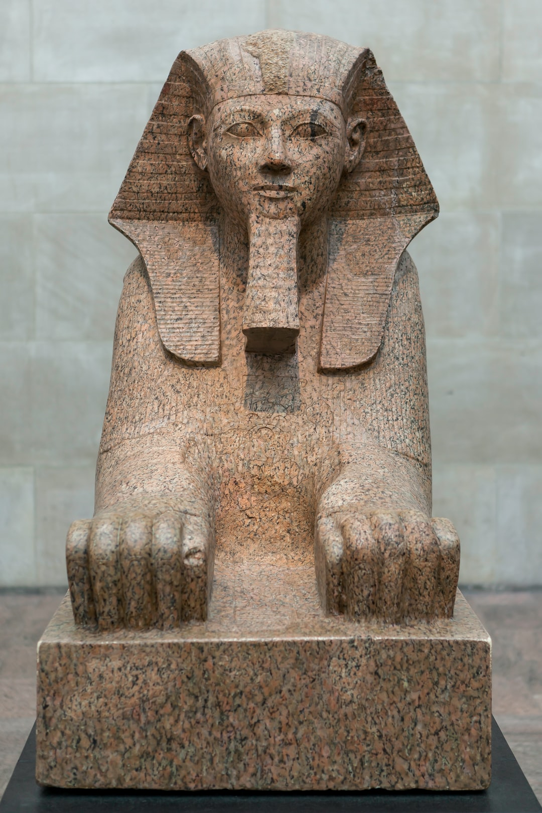 Sphinx of Hatshepsut (ca. 1479–1458 B.C.)  This colossal sphinx portrays the female pharaoh Hatshepsut with the body of a lion and a human head wearing a nemes–headcloth and false beard. The sculptor has carefully observed the powerful muscles of the lion as contrasted to the handsome, idealized face of the pharaoh. It was one of at least six granite sphinxes that stood in Hatshepsut's mortuary temple at Deir el-Bahri.