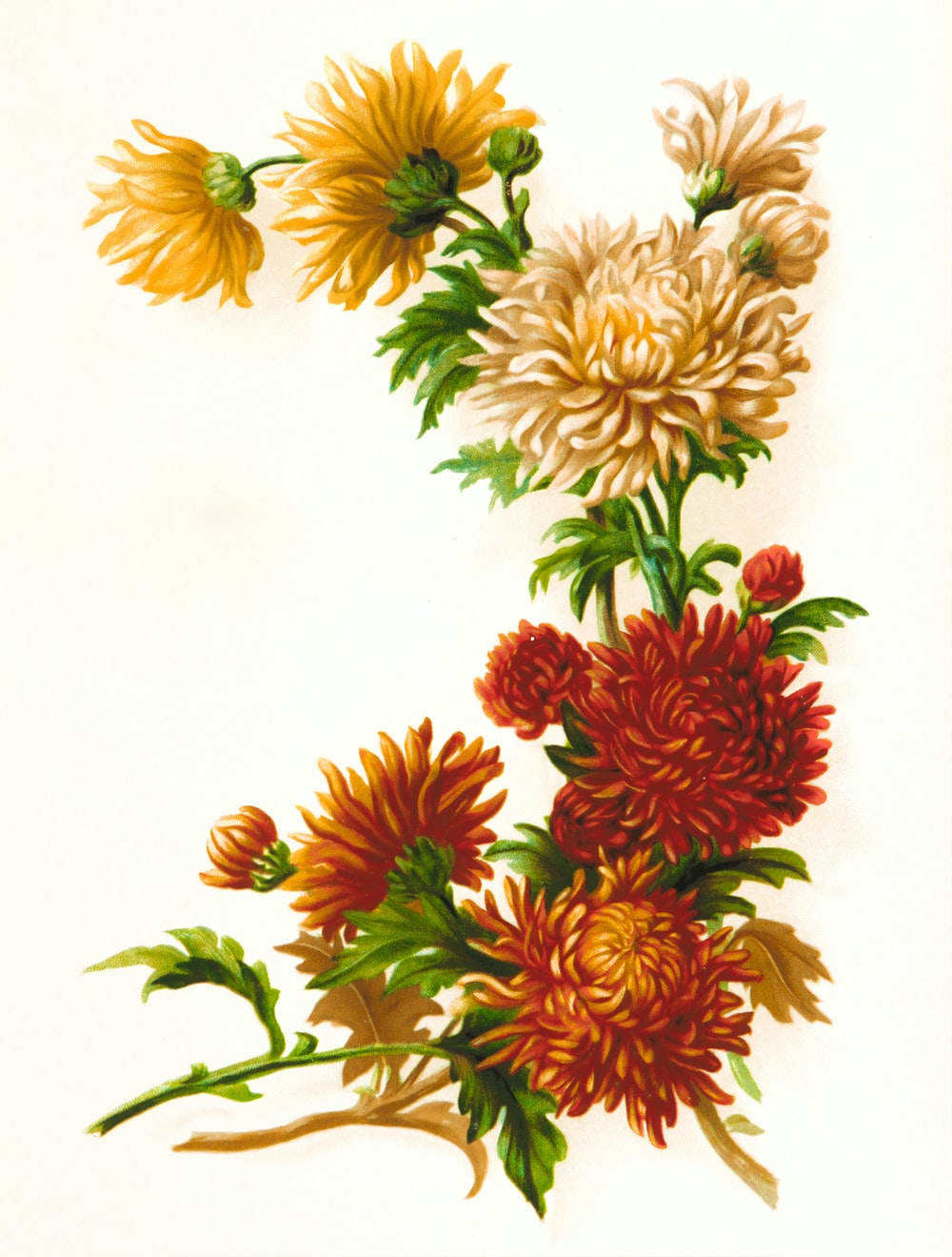 red and yellow flowers painting
