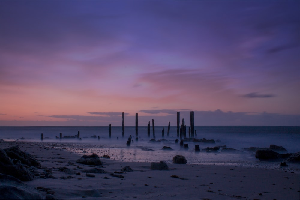 brown wooden posts on beach during sunset