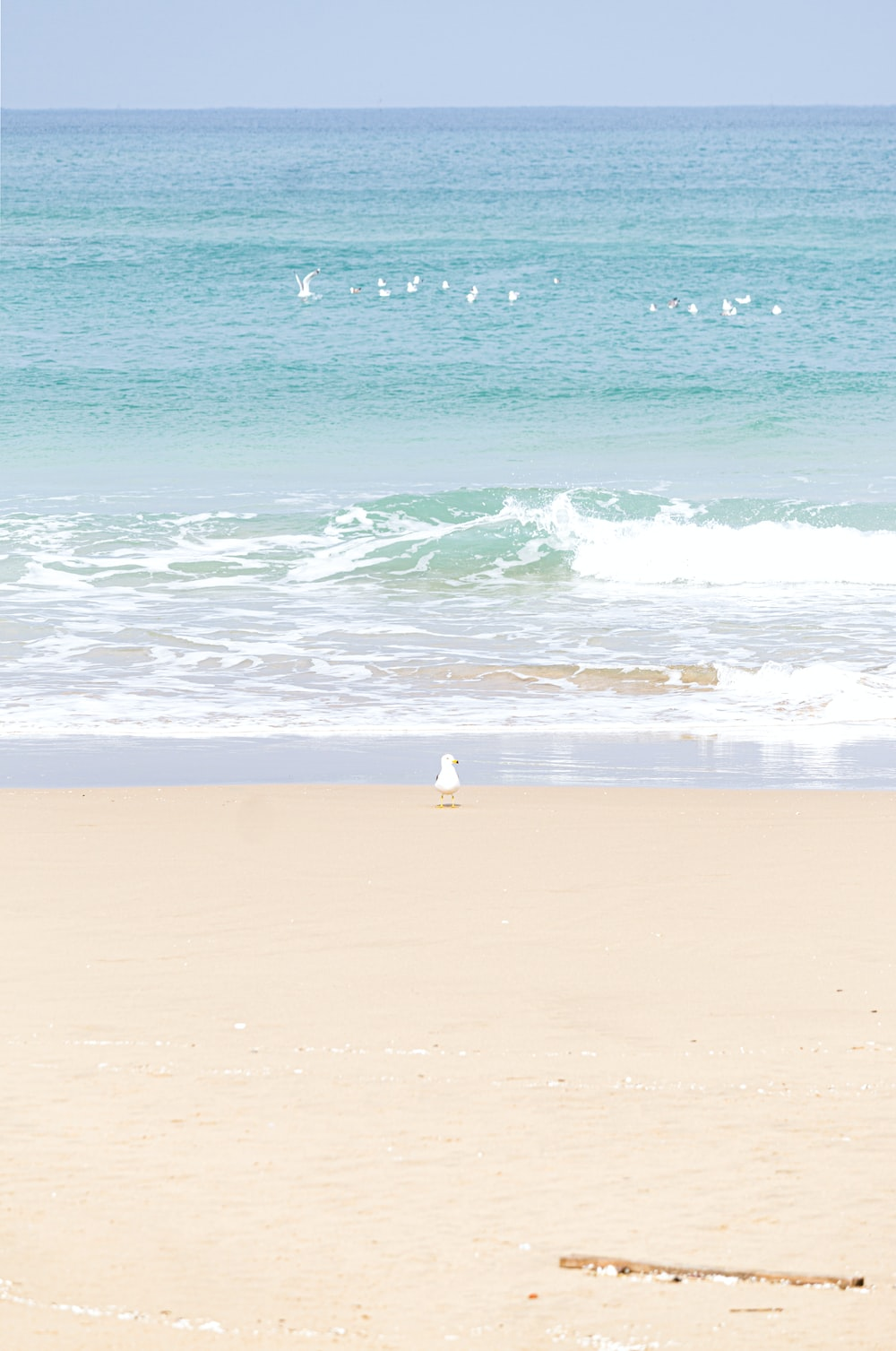person in white shirt standing on beach during daytime