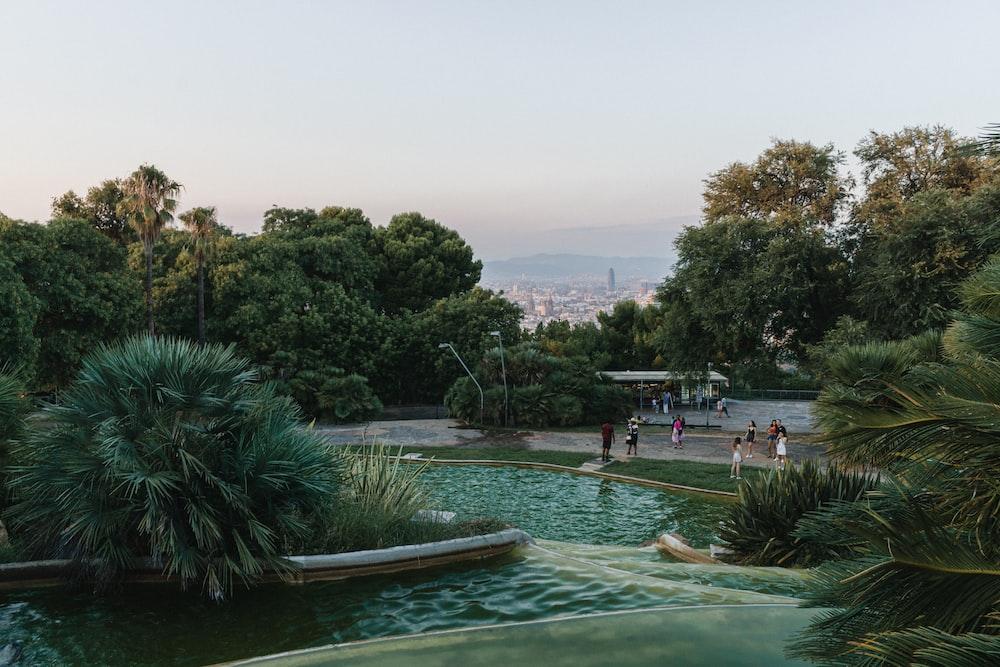 people swimming on pool during daytime
