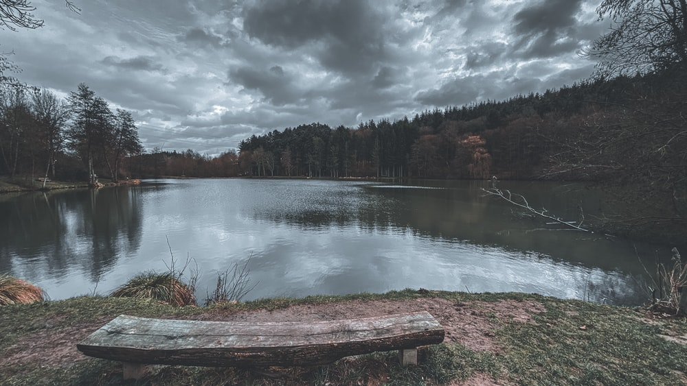 lake surrounded by green trees under cloudy sky during daytime