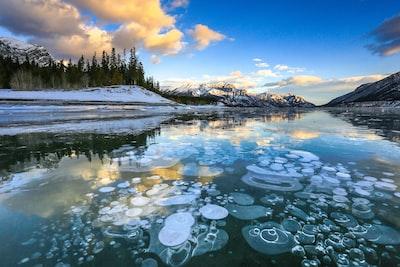 Ice bubbles at Abraham Lake, Alberta