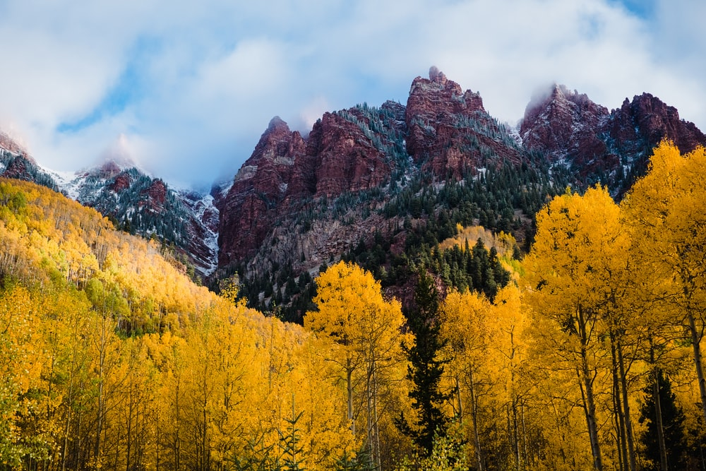 yellow and green trees near brown mountain under white clouds during daytime
