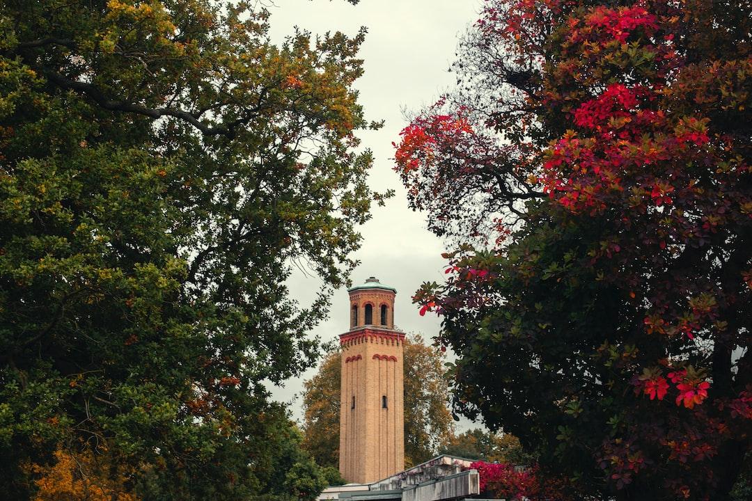 Towering Between the Greens