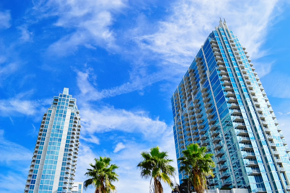 green palm trees near high rise buildings under blue sky during daytime