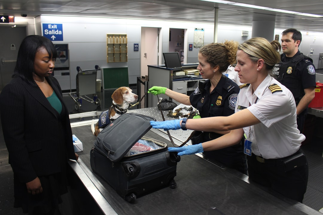 This 2017 photograph depicted a Centers for Disease Control and Prevention (CDC) Quarantine Station, Public Health Officer, as she was conducting inspections of CDC-regulated items. This type of activity takes place at 18-United States international airports, and land ports of entry, where most international travelers arrive. In this image, captured at Chicago's O'Hare International Airport, Enya, a Customs and Border Protection (CBP) dog, had sniffed out a possible banned item in baggage claim.