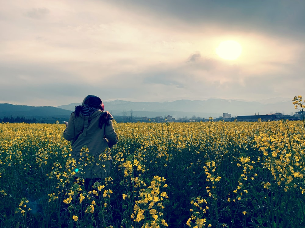 person in brown jacket standing on yellow flower field during daytime