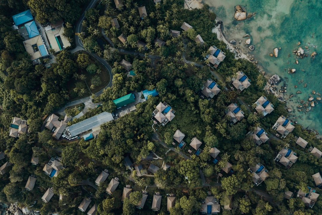 Aerial View of City Buildings and Trees - unsplash