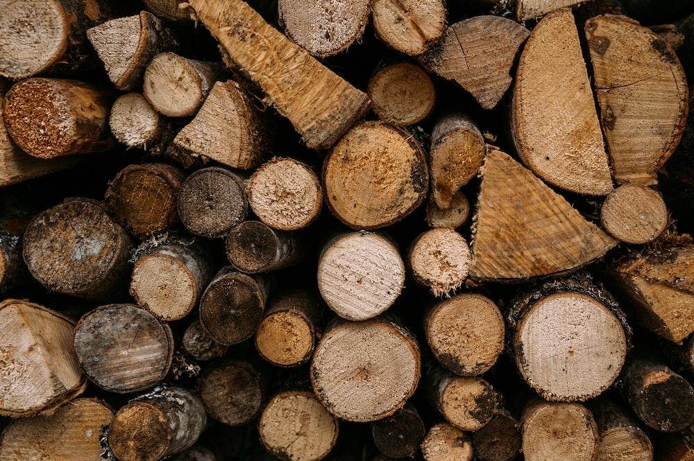 brown and black wood logs