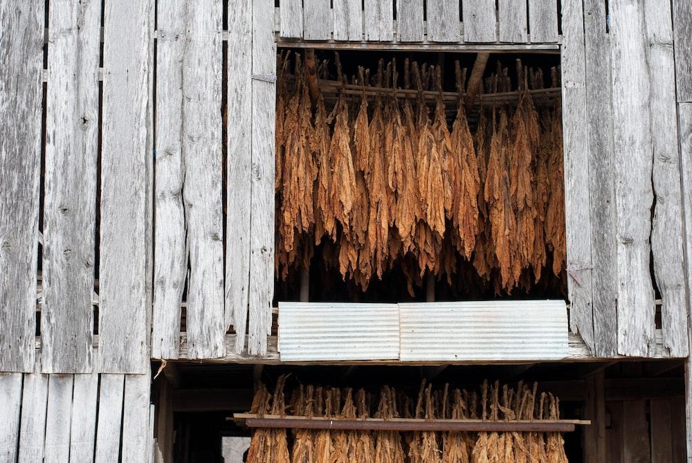 brown wooden wall with brown wooden door