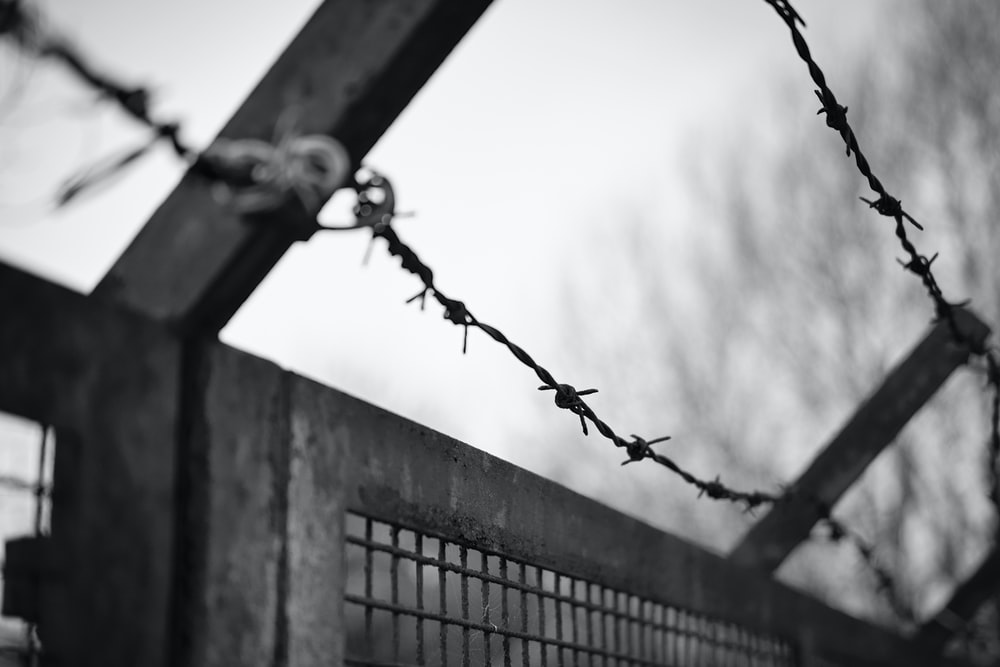 grayscale photo of barb wire