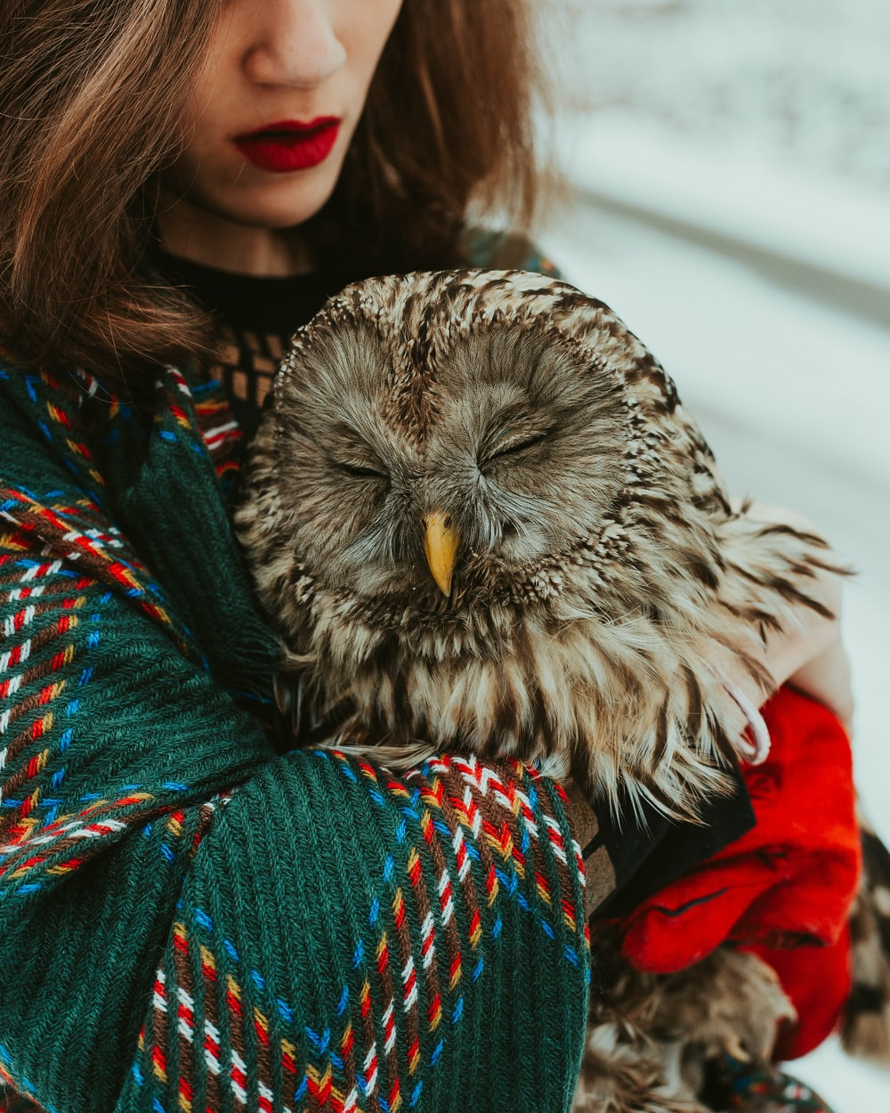woman in red and green scarf with owl on her shoulder
