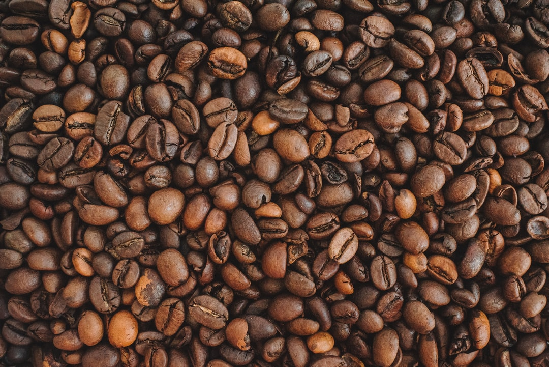 Continuous background of fresh arabica coffee beans