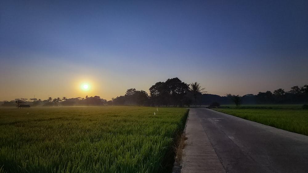 green grass field near road during sunset