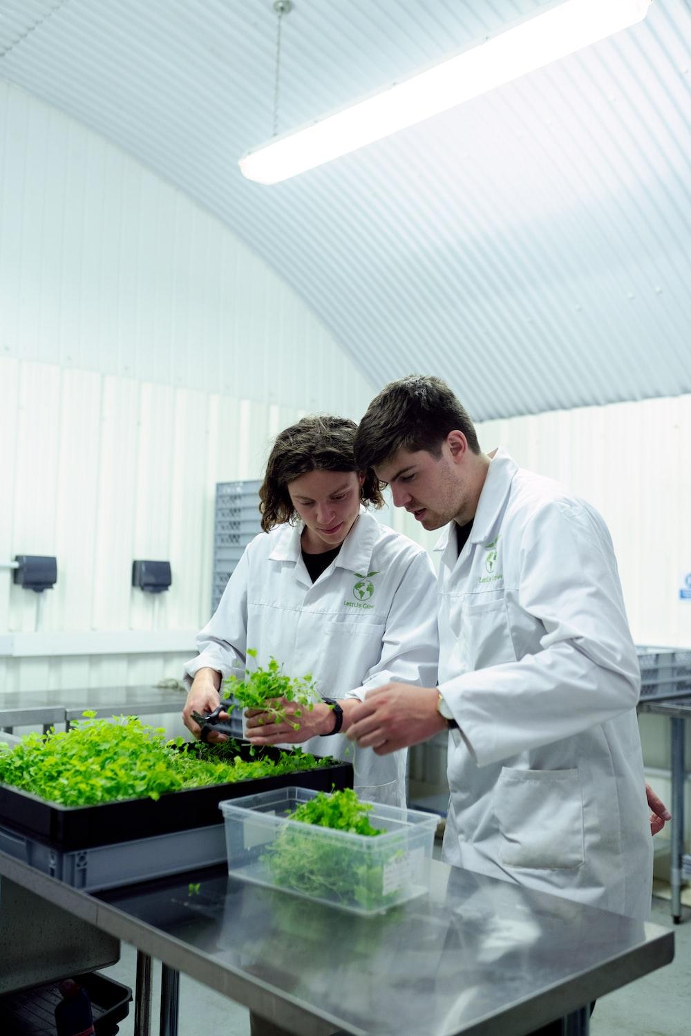 2 men in white dress shirt holding green plant