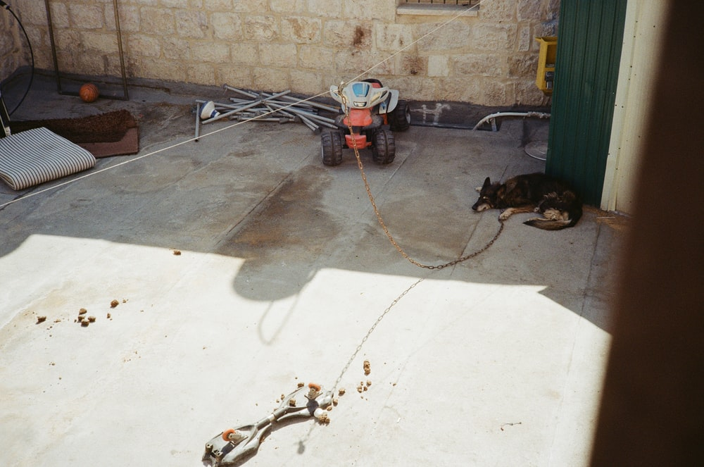 white and red power tool on gray concrete floor