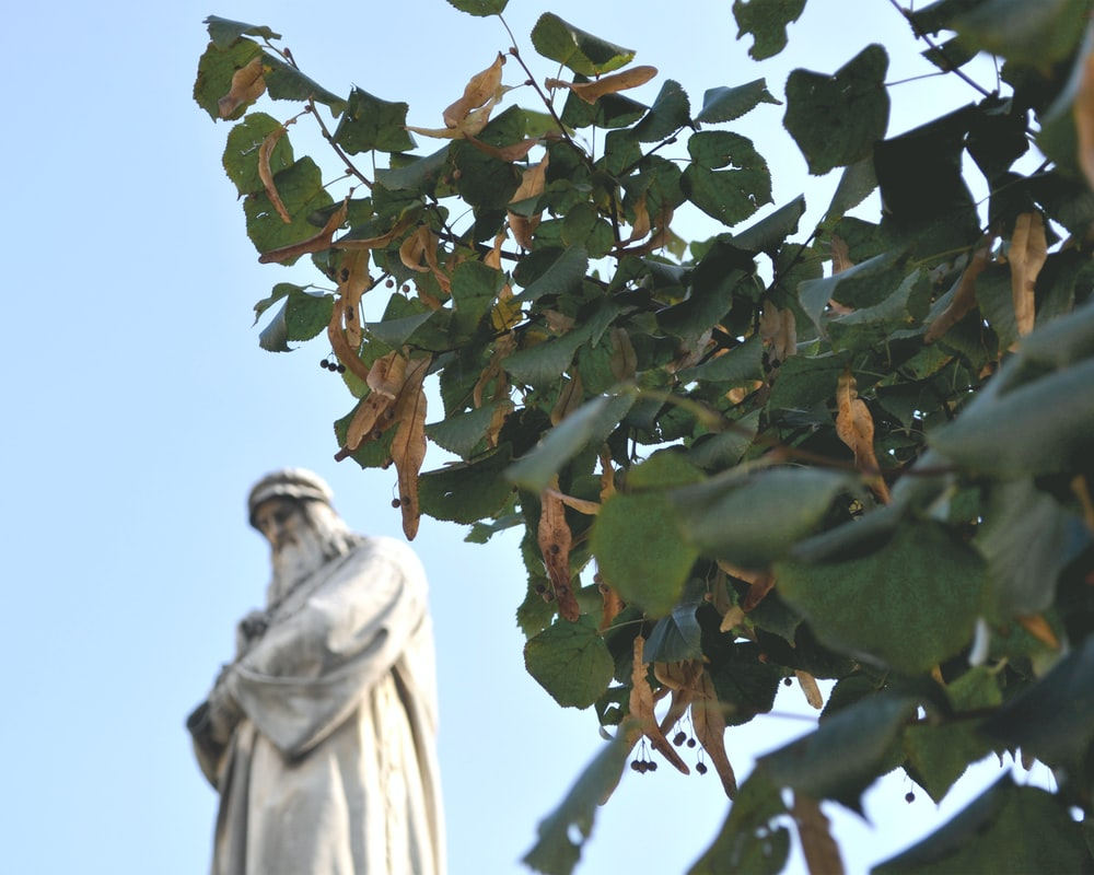 statue of man holding green leaves during daytime
